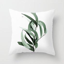 Eucalyptus - Australian gum tree Throw Pillow