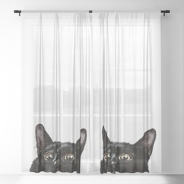 What's Up, Buddy Sheer Curtain
