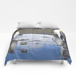 King Penguin Reflection Comforters