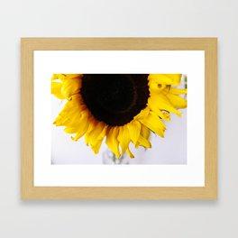 sun-flower Framed Art Print