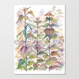 Wild flowers II Canvas Print