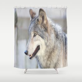 Bright Eyes and Fluffy Coat Shower Curtain