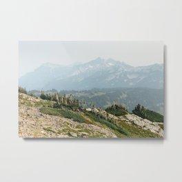 Mt Rainier Trail Metal Print