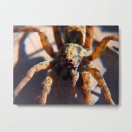 Attack of the Colossal Spider! Metal Print