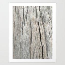 Califonia Toning Print: Stripped Oak Art Print