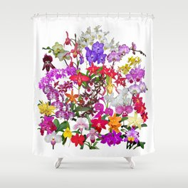 A celebration of orchids Shower Curtain