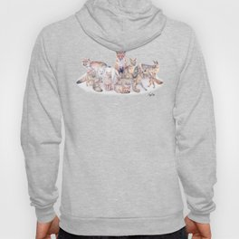 Foxes of the World Hoody