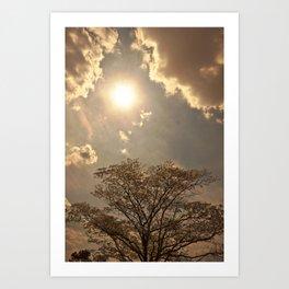 nature..sun..clouds..trees Art Print