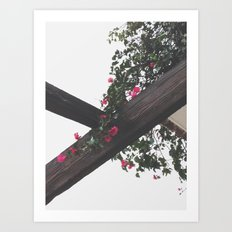 Wooden & Flowers Art Print