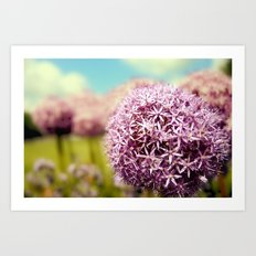 Alliumns Art Print