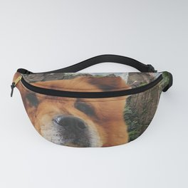 Dog Chow Chow Fanny Pack