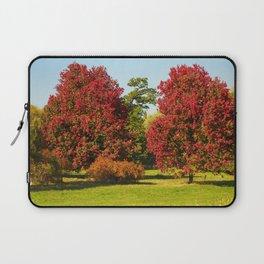 October Glory maple trees Laptop Sleeve