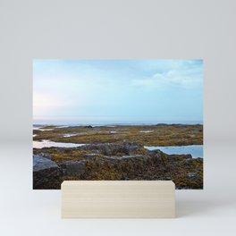 Tidal Shelf and the Fog Mini Art Print