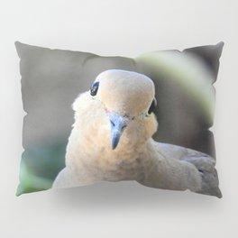Such a Sweet Face Pillow Sham