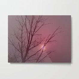 Rose Dawn Metal Print