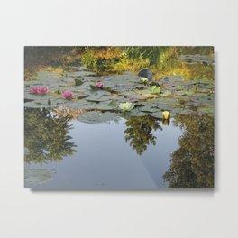 Monets Water Lilies Metal Print