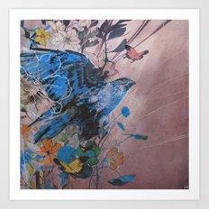 Buteo Regalis Art Print
