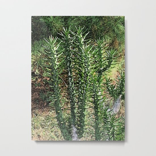 Green cactus in the garden digital painting Metal Print