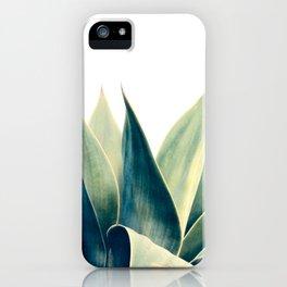 Botanical cactus I iPhone Case