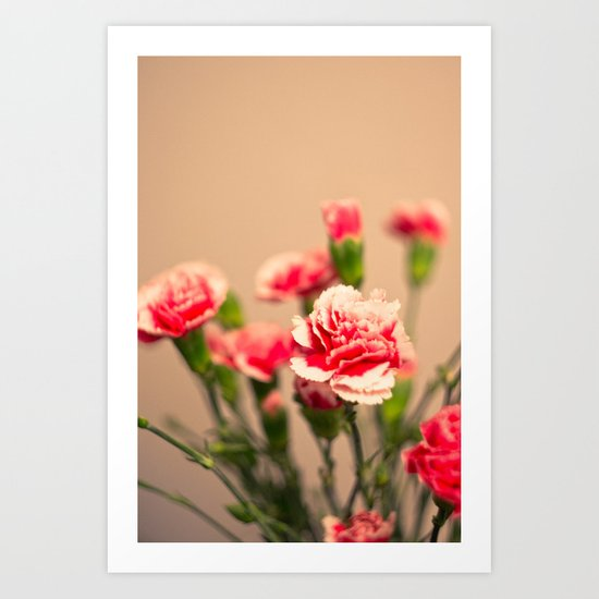 Carnation II Art Print