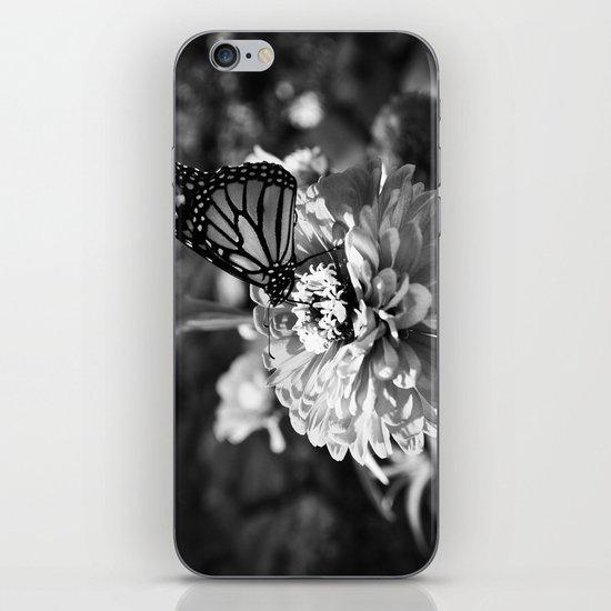 Butterfly on Flower iPhone & iPod Skin