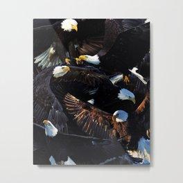 Eagles Metal Print