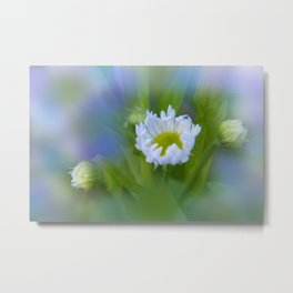 the beauty of a summerday -123- Metal Print