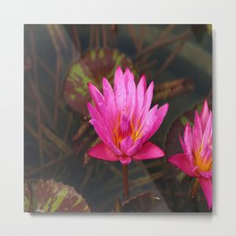 Glowing Beauty Metal Print