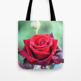 Roses on the city flowerbed. Tote Bag
