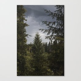 Lava Canyon Forest Canvas Print