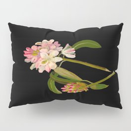 Rhododendron Maximum Mary Delany Vintage Botanical Paper Flower Collage Pillow Sham