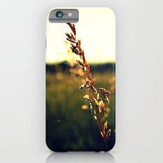 Prairie Wild - Color iPhone 6s Slim Case