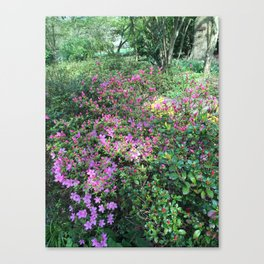Spring in England Canvas Print