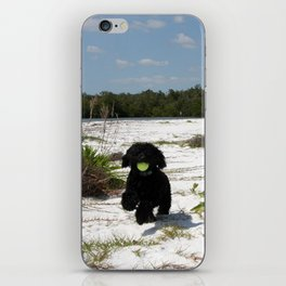 The pup  iPhone Skin