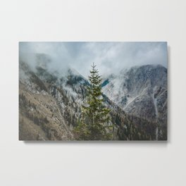 A Pine Tree Surrounded by Mountains in Austria. || Schneealpe, Österreich Metal Print