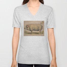 Vintage Illustration of a Domesticated Pig (1874) Unisex V-Neck