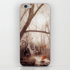 Secret place. iPhone Skin