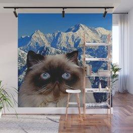 Himalayan Cat Wall Mural
