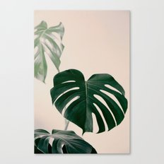 Botanical Vibes VII Canvas Print