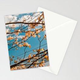 Spring Floral Sky Stationery Cards