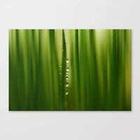 grass Canvas Prints featuring grass by Ingrid Beddoes