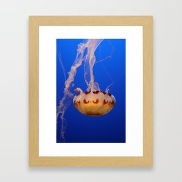 Medusa Jelly Framed Art Print