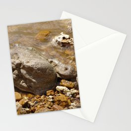 Rocks In The Current Stationery Cards