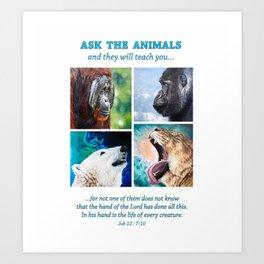 Ask The Animals Art Print