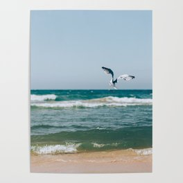 Gull Flight Over Lake Michigan Poster