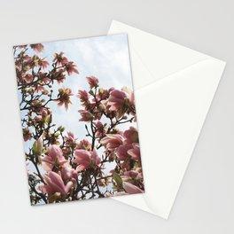 Spring Magnolias Stationery Cards