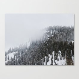 Restful Spaces Canvas Print