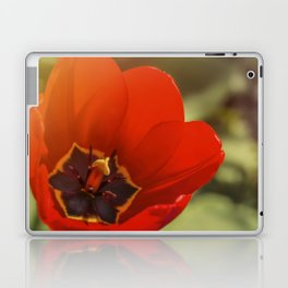 red tulip blossom Laptop & iPad Skin