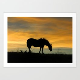 End of the Trail, Horse in Sunset Art Print