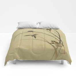 Orchid Sonata Comforters